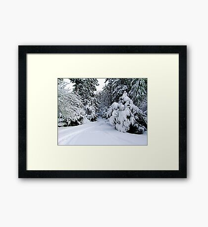 Tracks in my Driveway Framed Print