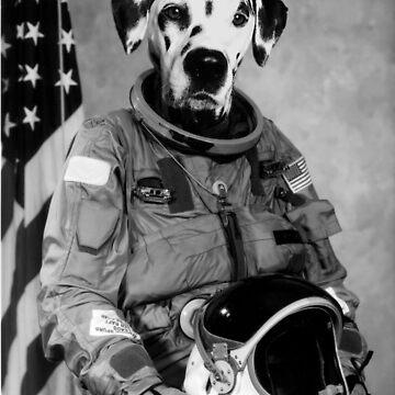 Astronaut Dalmatian by GeorgeSears