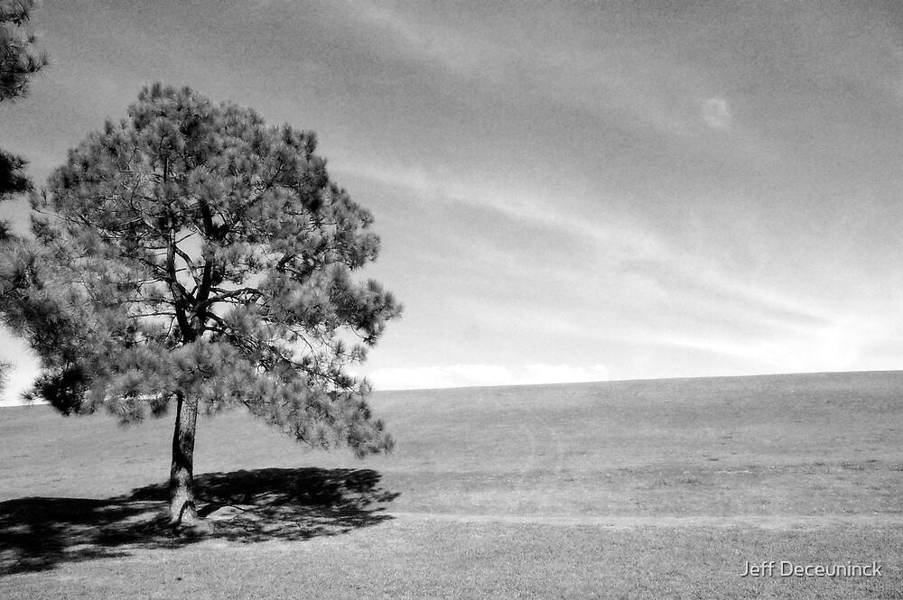 the tree by Jeff Deceuninck