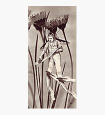 M Blackwell - The Harvester... Photographic Print