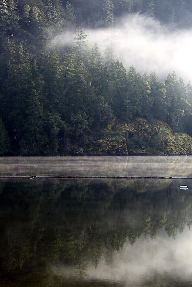 Lake at dawn by Mark Yager