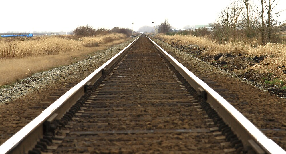 Endless Rails by Mark Yager