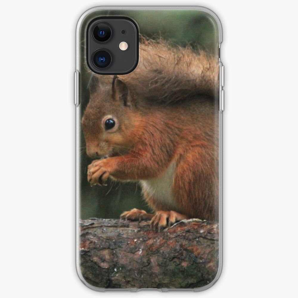 Squirrel shelter iPhone Case & Cover