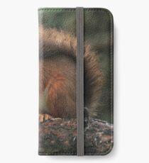 Squirrel shelter iPhone Wallet/Case/Skin