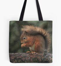 Squirrel shelter Tote Bag
