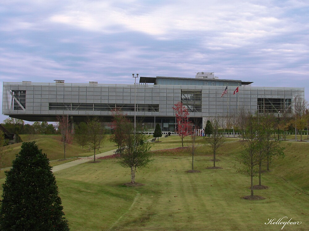The Clinton Library  by kelleybear