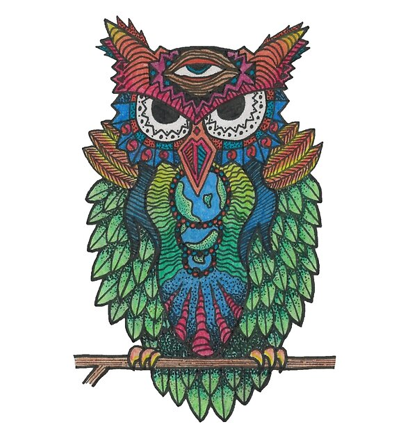 Cosmic Owl by dacart