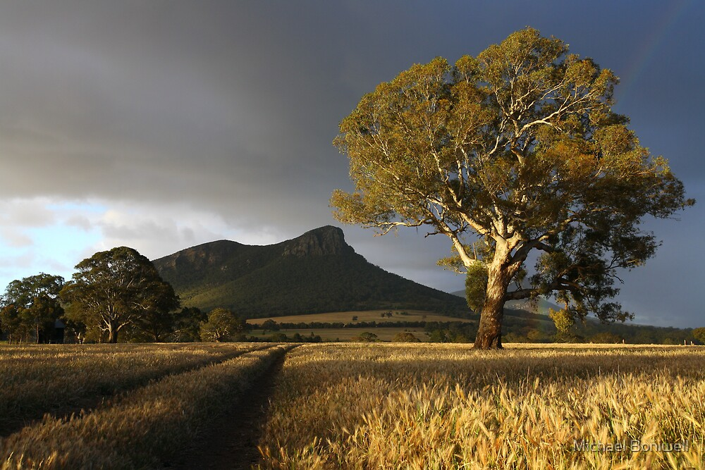 Wild Light over the Grampians, Dunkeld, Australia by Michael Boniwell