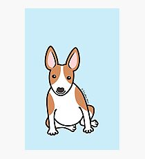 English Bull Terrier Puppy Dog ... brown & white Photographic Print