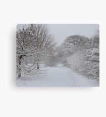 Walmley Winter Wonderland Metal Print