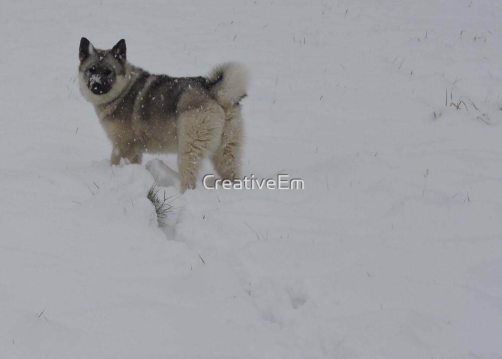 Snowy Trails by CreativeEm