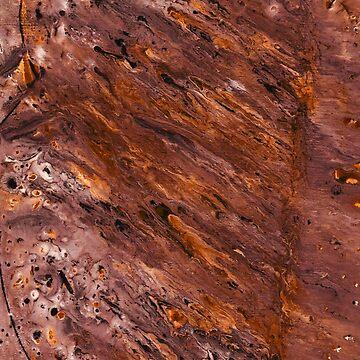 Pintura de madera de afremovartist