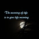 The meaning of life by down23