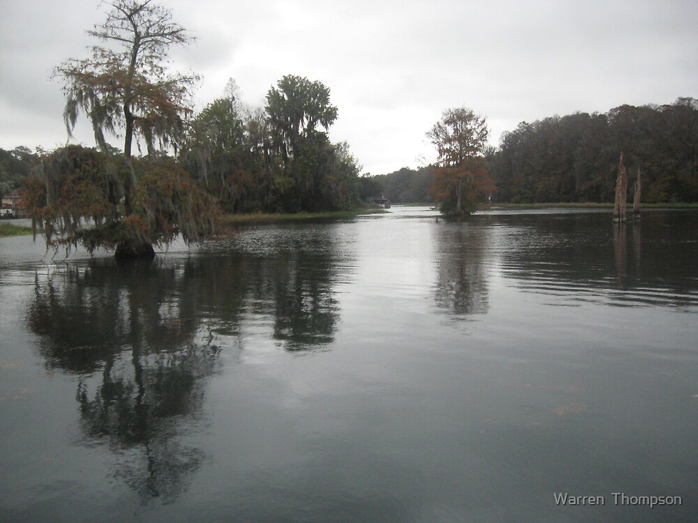 Overcast On the Rainbow River by Warren  Thompson