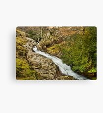 Stickle Ghyll Canvas Print