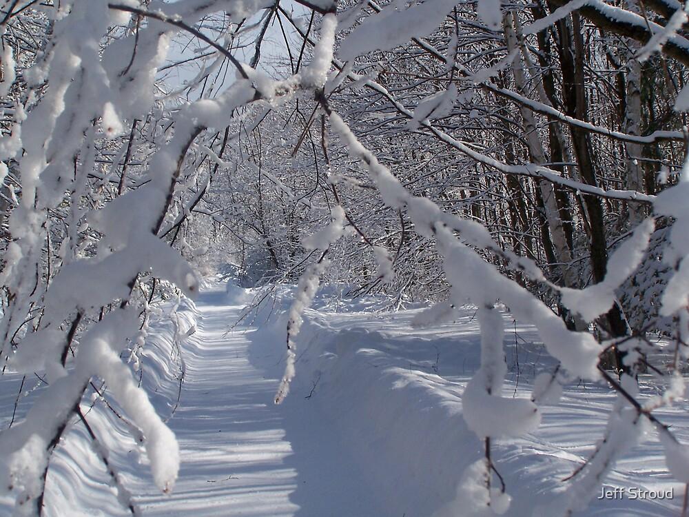 Winter wonder land by Jeff stroud