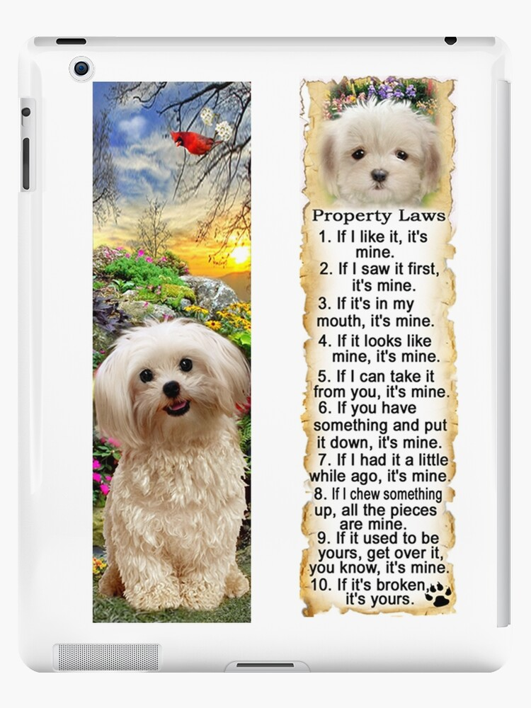 Yorkie Poodle Mix Morkie Dog Property Rules Laws Ipad Cases Skins