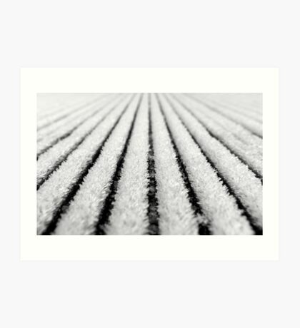frosted deck boards Art Print