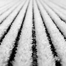 frosted deck boards by SNAPPYDAVE