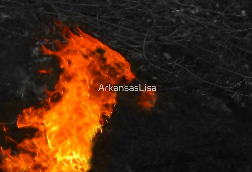 Fire Dragon by ArkansasLisa