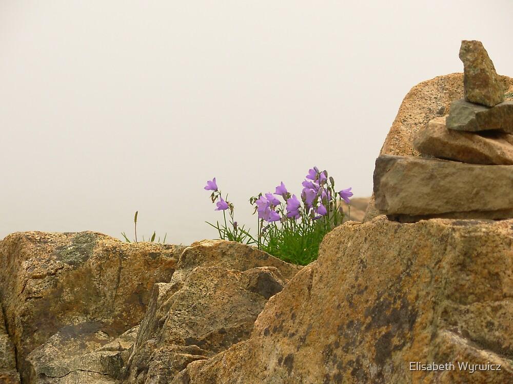 Wild Flowers by Elisabeth Wyrwicz