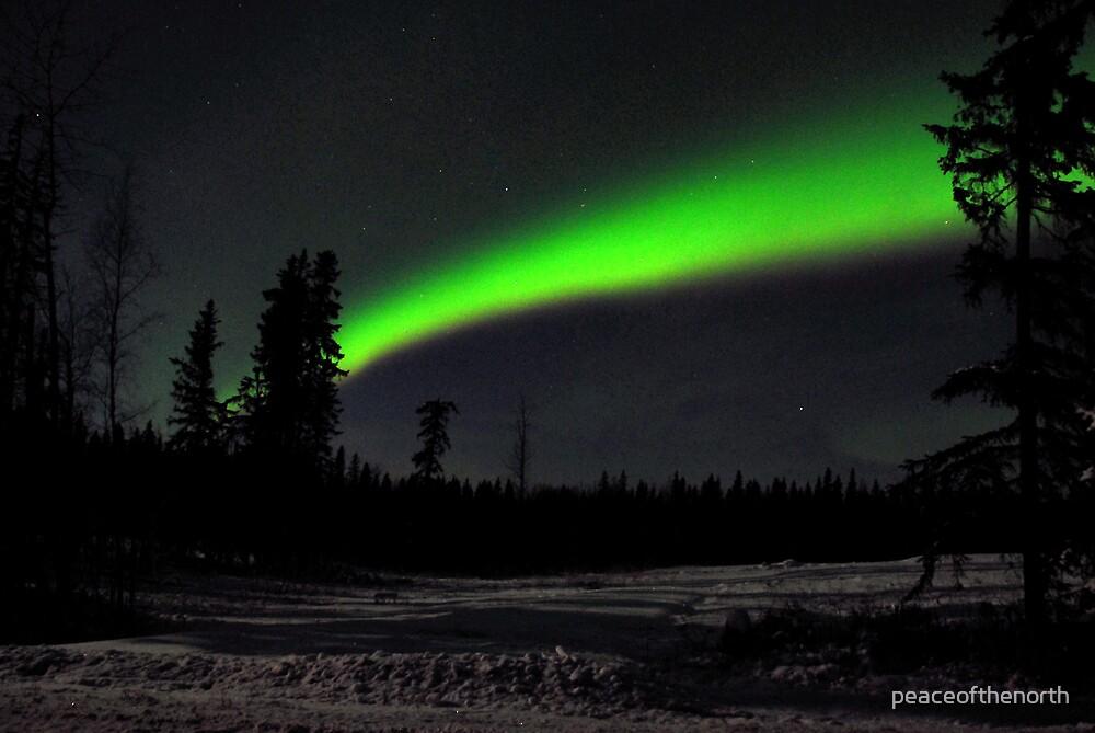 Winter Lights by peaceofthenorth