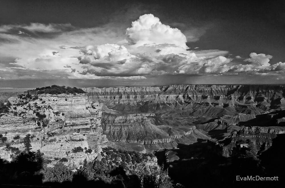 Grand View in B&W by EvaMcDermott
