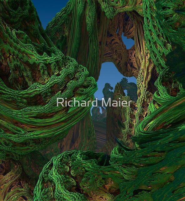 Rain Forest 1 by Richard Maier