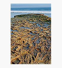 Rocky Roads Can Be Beautiful Photographic Print