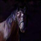 Dark Horse by Michelle Wrighton