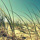 Beach Dunes by Kitsmumma