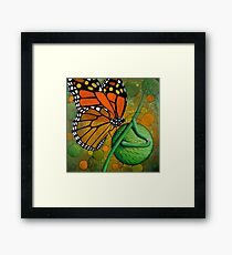 Monarch Butterfly & Swan Plant Framed Print