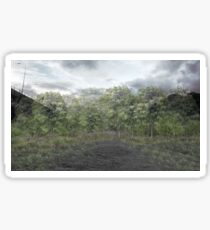Mangrove Forest  Sticker
