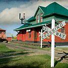 Pollockville Station by Amanda White