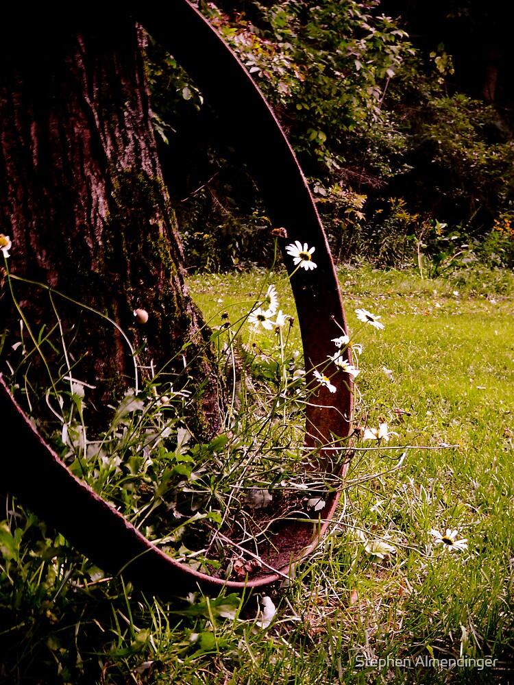 Old Wheel by Stephen Almendinger