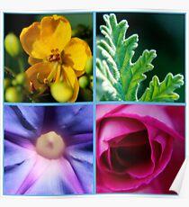 Flowers macro pattern Poster