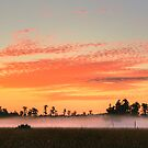 Florida Sunrise by MMerritt