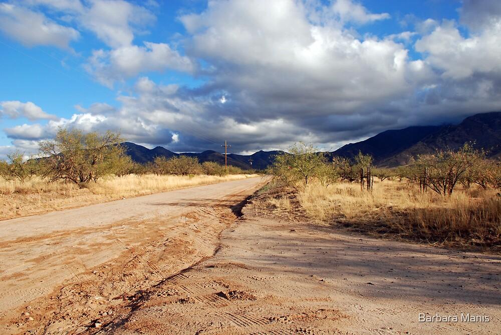 Dirt Road by Barbara Manis