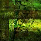 Textured Wall by Lorraine Creagh