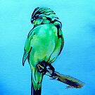 NZ Red-Crowned Parakeet by Patricia Howitt