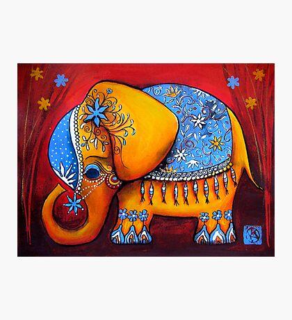 The Littlest Elephant Photographic Print