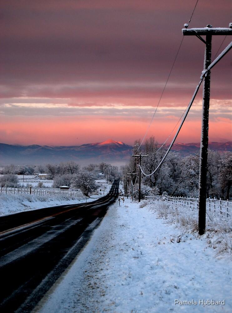 Into Alpenglow  by Pamela Hubbard