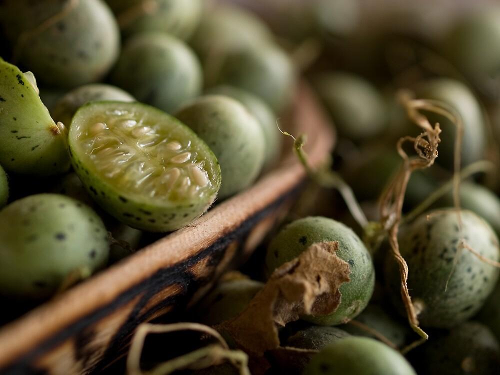 Bush Cucumber by John Brawley