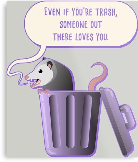d3b78ec83 Trash babies possum jpg 469x550 Baby possum cartoon