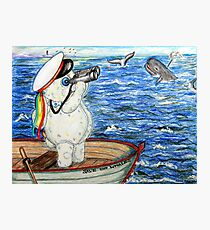 Pooky Saving the Whales Photographic Print