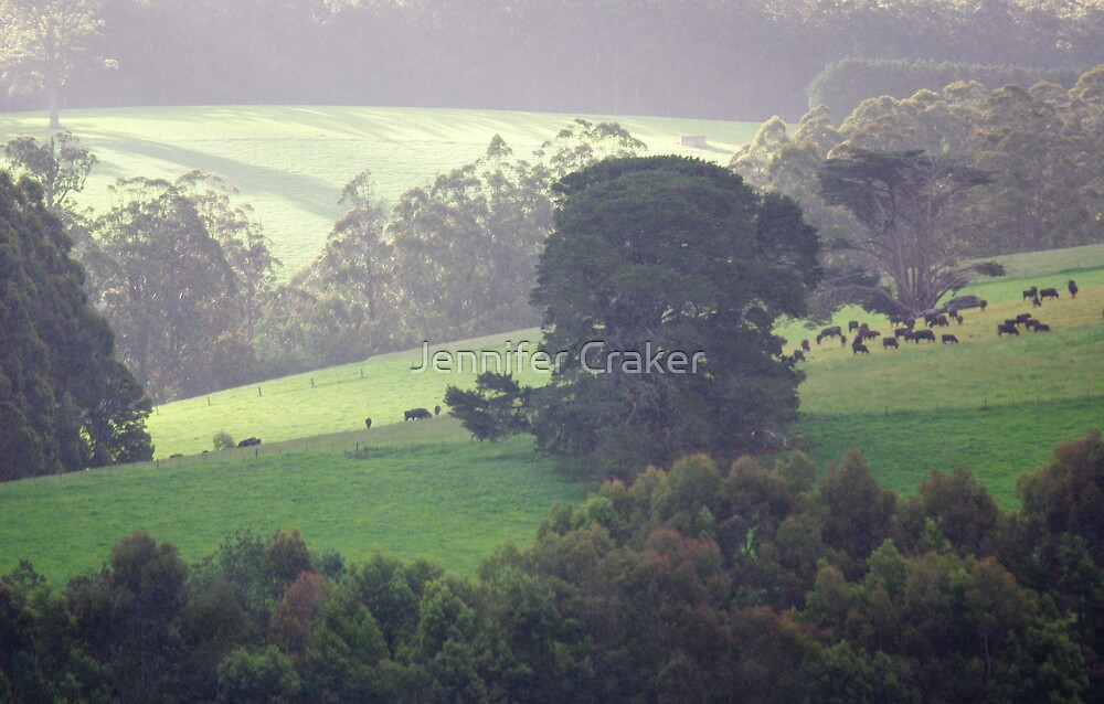 Afternoon sun on Noojee Valley by Jennifer Craker
