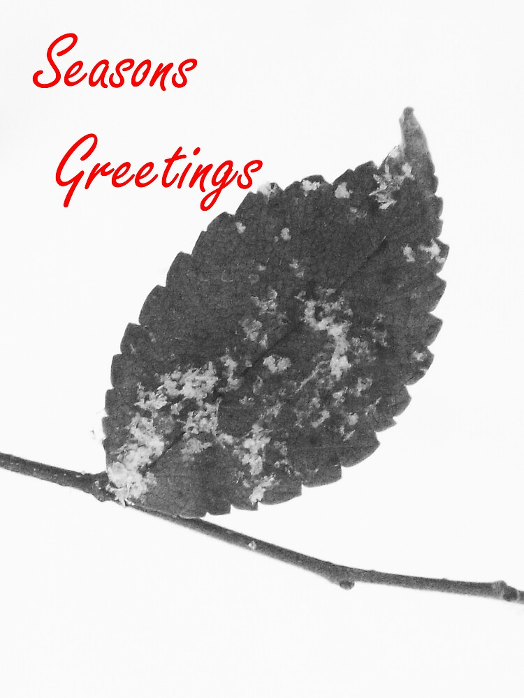 Season Greetings  by Michelle BarlondSmith