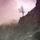 Pink Fog by anartfulsoul