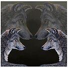 4 Wölfe/Wolves von Doris Thomas