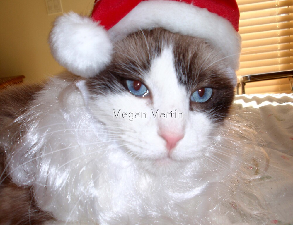 Santa Cat by Megan Martin